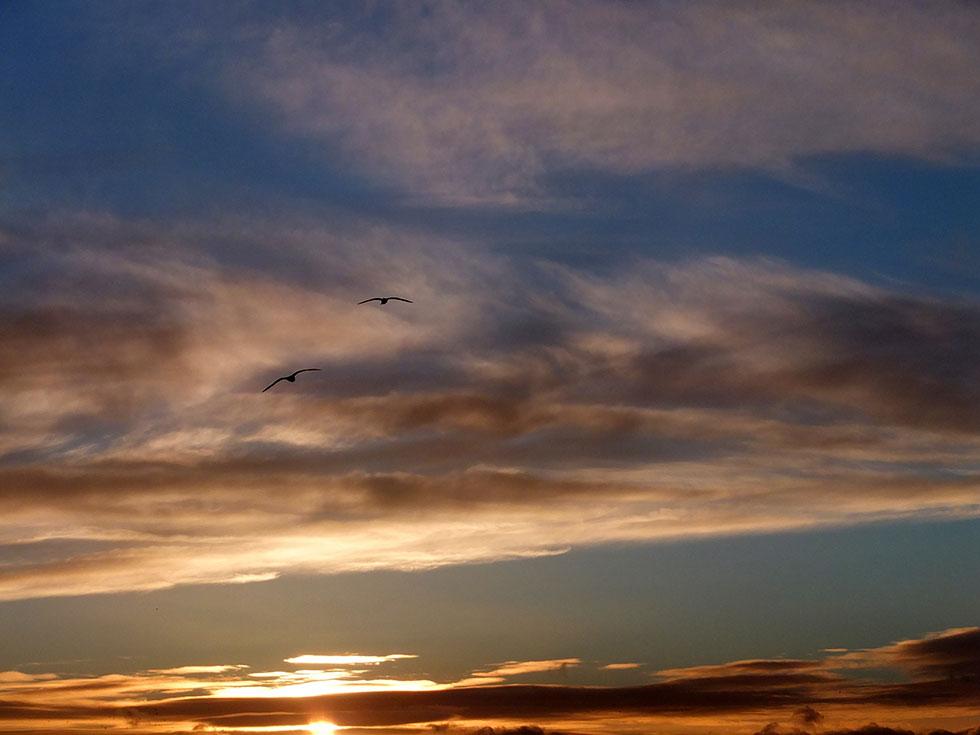 sky photography neil johansson