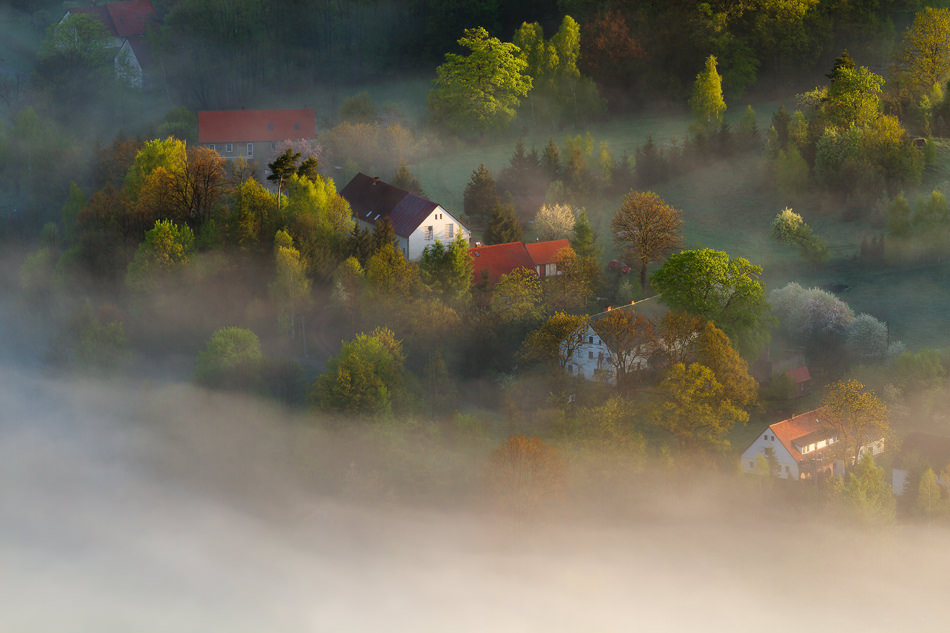 beautiful morning photography by iza and darek