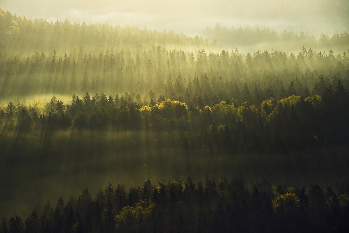 saxon switzerland photography