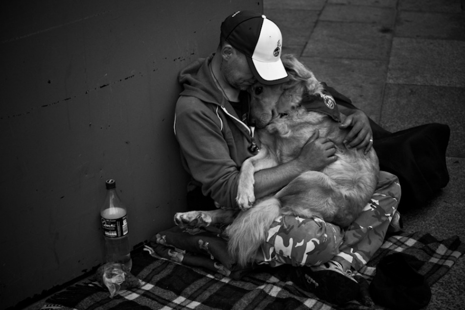 love photography man dog by anze malvorh