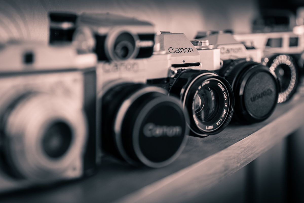 3 vintage photography canon camera by king grecko